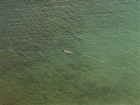 untitled (july 29, 2012 7:43pm) by richard misrach