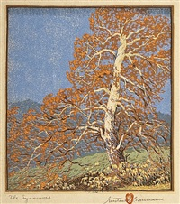 the sycamore by gustave baumann