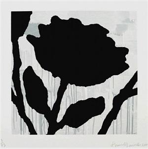 flower study ii by donald baechler