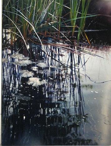 luminous-drift by david kessler