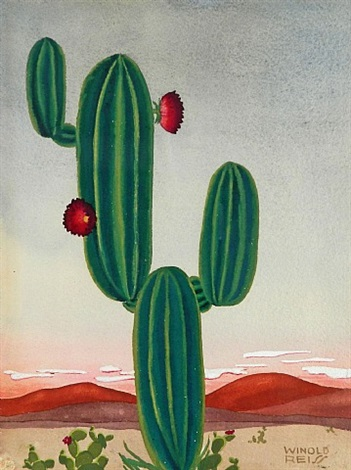 cacti by winold reiss