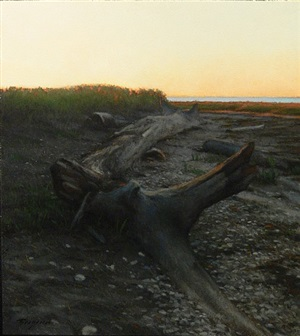 driftwood by peter bergeron