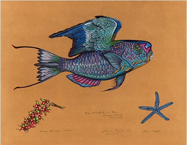 blue parrotfish by james prosek