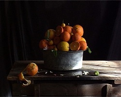 zitrusfrüchte i + ii by gabriella gerosa