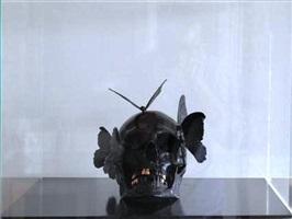 vanite aux papillons by philippe pasqua