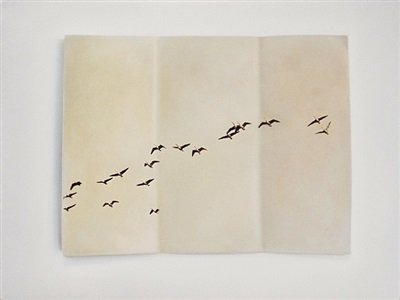 augury (birds in flight) by claire kerr