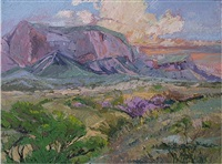 big bend afternoon by mary ann mcfall