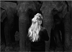 elephant girl by george krause