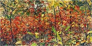thicket 26 by jeffrey vaughn