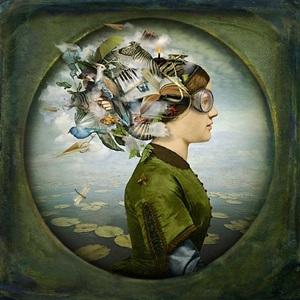 the burden of dreams by maggie taylor
