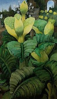 flowering vegetables by edward burra
