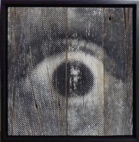 inside out project - oeil trame 15 by jr