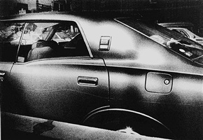 memory of dog 2, 1982 by daido moriyama