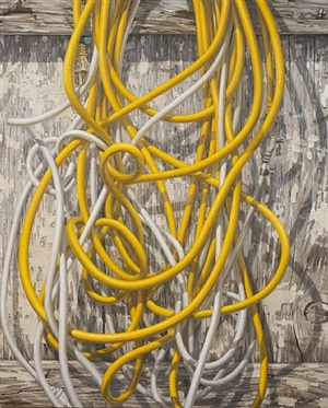 unplugged 50 ft yellow, 40 ft white by clive smith