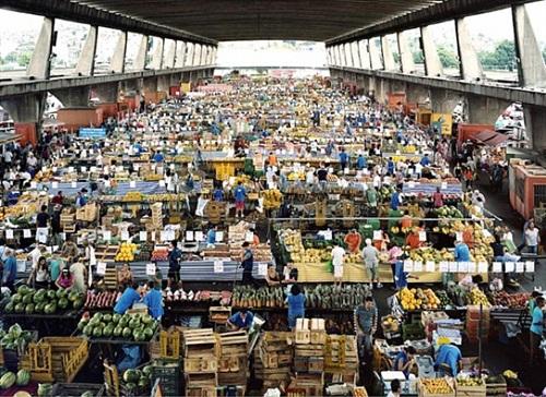 mercado ceagesp sao paolo by massimo vitali