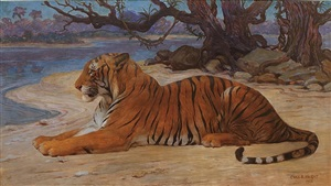 the river of time (the princeton tiger) by charles robert knight