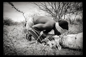 cradle of mankind: hamar blood ritual, turmi, ethiopia by clark and joan worswick