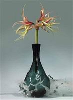 ohne titel (amaryllis) by martin klimas