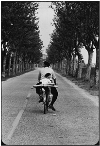 provence, france, 1955 by elliott erwitt