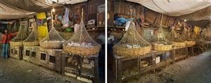 hogg street market chickens, kolkata, india by peter steinhauer