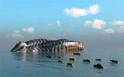 island-mackerel by kim joon