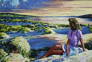 summer sunset by howard behrens