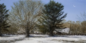 winter afternoon (sold) by del-bourree bach