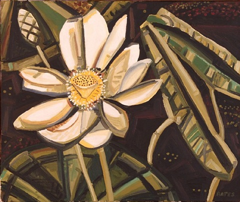 waterlily by david bates