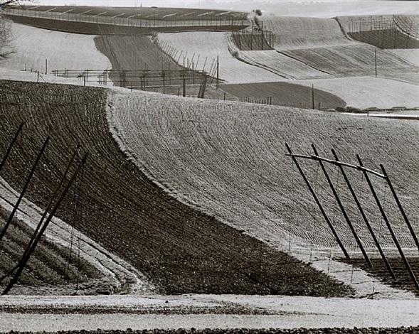 landschaft hallertau by peter keetman