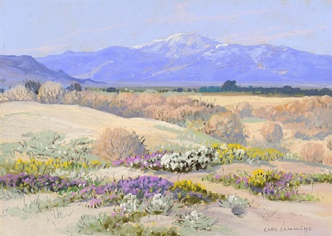 verbenas, desert gold and evening primroses near palm springs by carl sammons