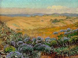 the wildflowers of the sand dunes of san francisco by theodore wores