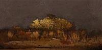 scenapse #8 (desert nocturn) by aziz and cucher
