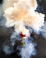 exploding rose by david drebin