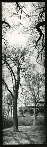 belvedere garden prague by josef sudek