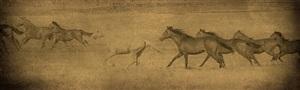 horses running by jack spencer
