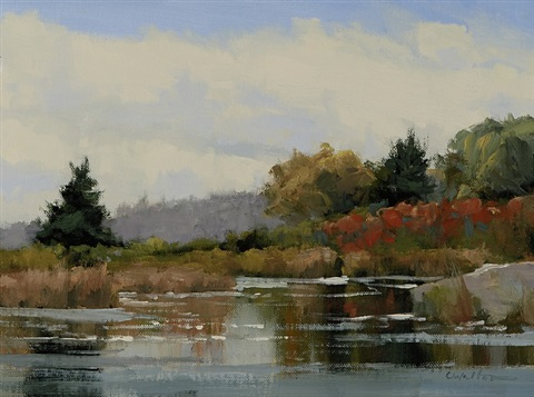 meigs point pond, autumn by carolyn walton