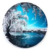 winter (four seasons series) by jessica lichtenstein