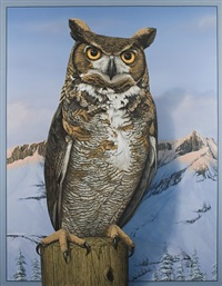 great horned owl by tom palmore