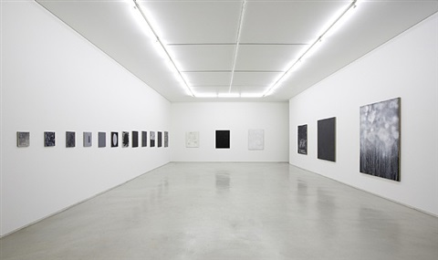 installation view by meena park