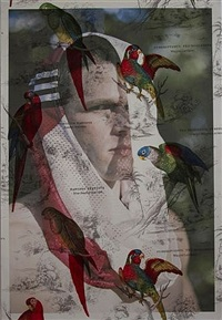 andy speer, new york (on parrot toile) by tim hailand