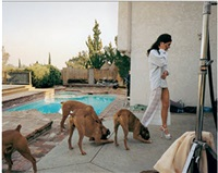 untitled by larry sultan