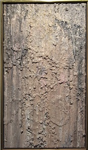 january mixed show by larry poons