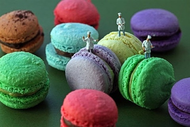 macaron team by christopher boffoli