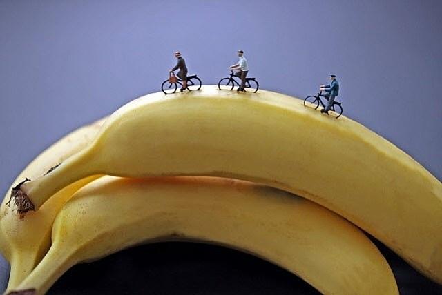 banana riders by christopher boffoli