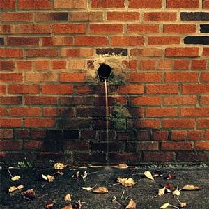 water hole by miska draskoczy