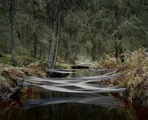 river bed by riitta päiväläinen