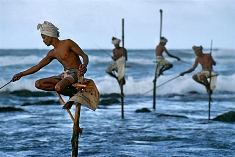 stilt fisherman sri lanka by steve mccurry