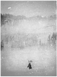 in the snow vii by donata wenders