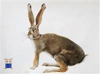 northern cottontail rabbit by scott kelley