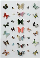 book butterfly by peter wüthrich